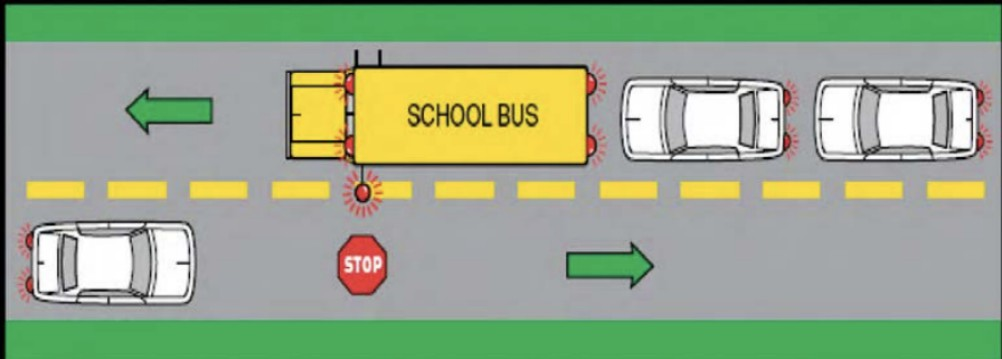 School Bus Laws By State: When To Stop And When Not To!