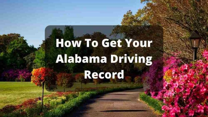 How To Get Your Alabama Driving Record